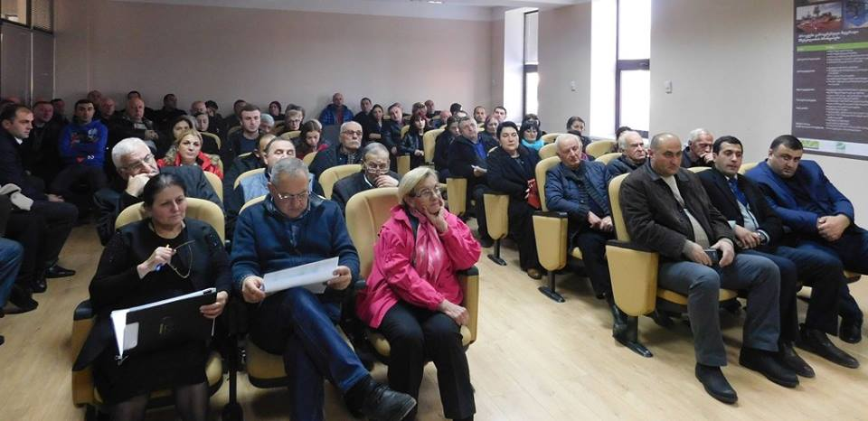 Public discourse on Akhaltskha's budget for the year 2017
